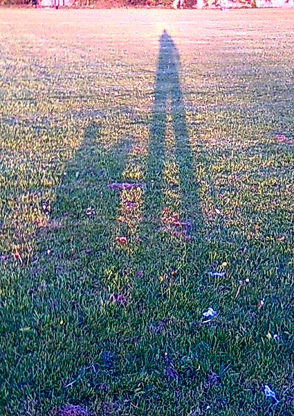 Shadows on grass of Eolai and DogDog